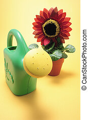 Sunflower Plant and Watering Can