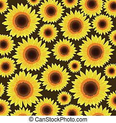 Sunflower seamless pattern background - Vector illustration Sunflower seamless pattern background - Vector illustration