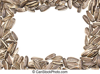 Sunflower seeds frame.