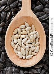 Sunflower seeds in wooden spoon