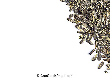 Sunflower seeds Isolated on White Background