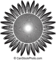 sunflower silhouette vector - the Vector illustration...
