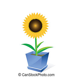 Sunflower spot concept - Beautiful sunflower spot concept ...