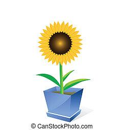 Sunflower spot concept - Beautiful sunflower spot concept ...