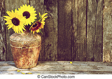 High contrast image of a rustic vase with beautiful sunflowers in the partial shade on a rustic, grunge background with copy space.