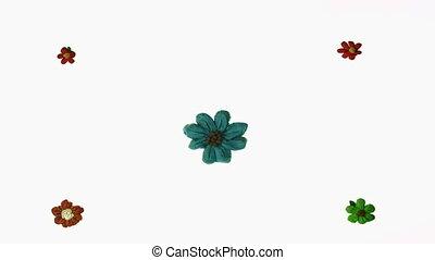 plasticine flower animation over white background
