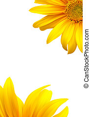 Sunflower template background