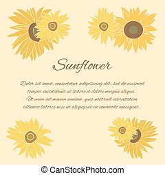 Sunflower vector greeting card on the bright background -...