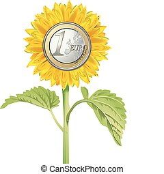 sunflower with euro coin