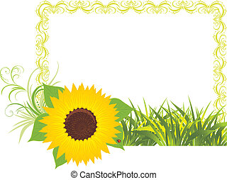 Sunflower with grass in the frame