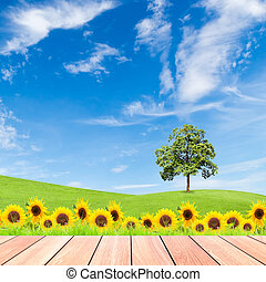 sunflowers and tree on green grass field with blue sky and  wood plank foreground