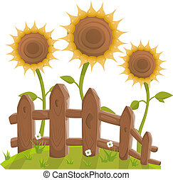 Sunflowers behind fence vector