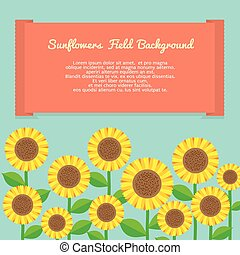 Sunflowers Field background.