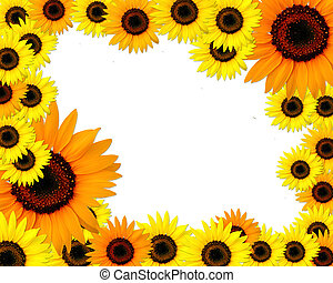 Sunflowers frame with place for you text