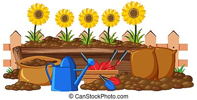 Sunflowers in the flower bed on white background illustration