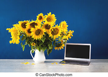 Sunflowers in white vase on blue background with laptop