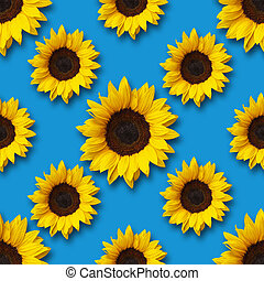 sunflowers on blue seamless pattern