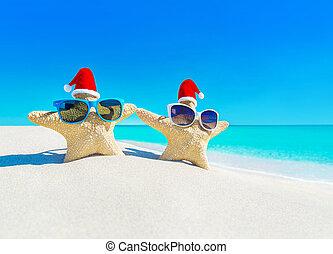 sunglasses, święty, para, gwiazdy, plaża, kapelusze, morze