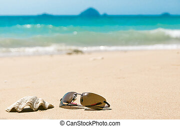 Sunglasses and sea shell on sandy beach. Blurred background