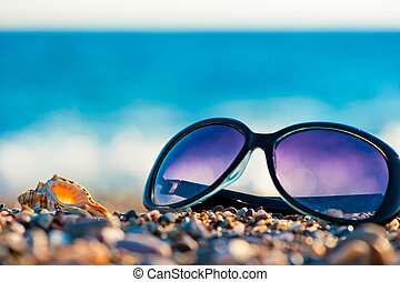 sunglasses and shells on the beach