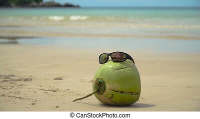 Sunglasses on coconut