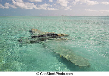 Sunken airplane. Exuma, Bahamas