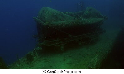 Sunken ship underwater Red sea. Video about shipwrecked on...