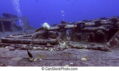 Sunken ship underwater Red sea.