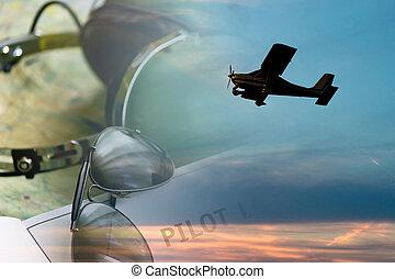 sunlgasses and airplane