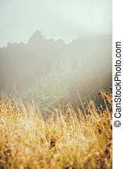 Sunlight diffused by fog fall over dried yellow grass. Sharp mountain ridge silhouette on the background. In a valley on Santo Antao Cape Verde