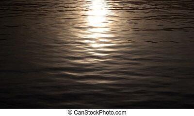 Sunlight on a lake