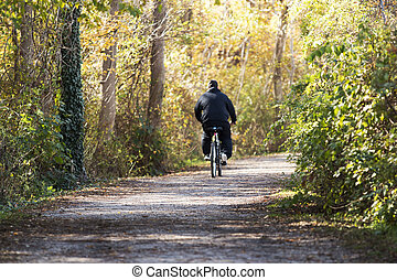 Sunlight on a man riding his bike in the woods