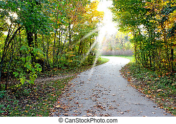 Sunlight - path merged on to the road leading to sunlight