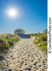 Sunlight Path on Beach