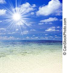 sunlight., plage, beau, exotique