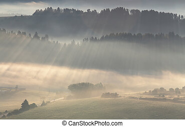 Sunlight rays shines through mist fog and forest in...
