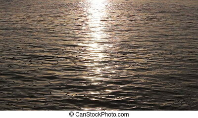 sunlight reflected on water