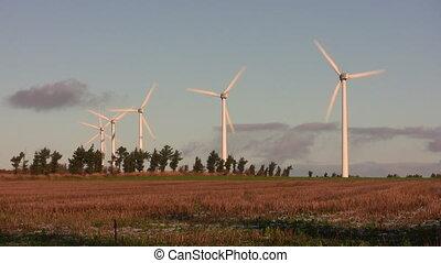 Sunlit wind turbines - Wind turbines and a warmly lit field...