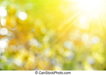 Sunny abstract autumn nature background