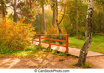 Sunny autumn day, picturesque park landscape in October
