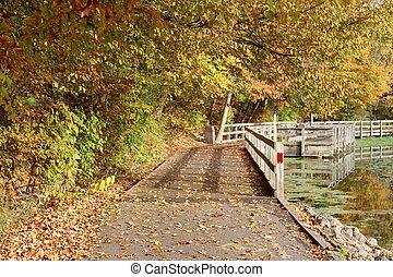 Sunny Autumn Walkway