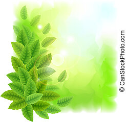 Sunny background with green leaves. Vector illustration.