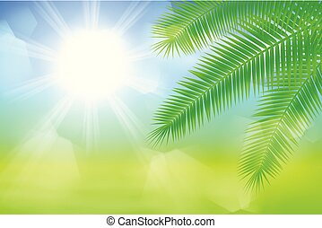 Sunny background with palm leaves