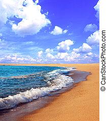 Sunny beach and ocean waves