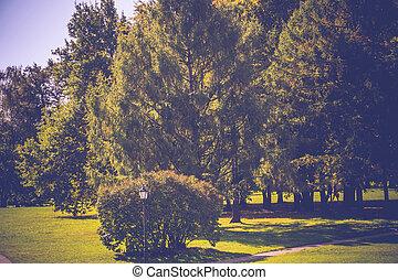 Sunny City Park Retro