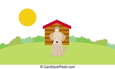 sunny day happy dog in the field wooden house animation hd