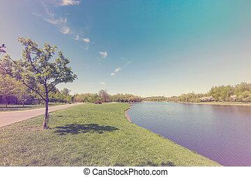 Sunny day on a calm pond