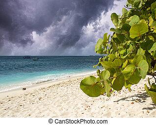 Sunny day on the Beach, Caribbean