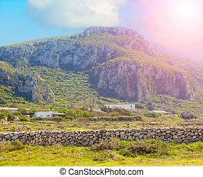 Sunny day on the island of Favignana