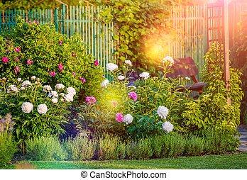 Sunny Flowering Garden